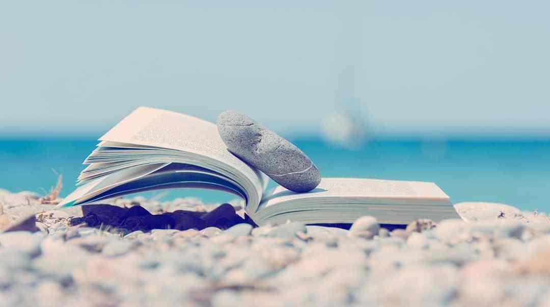 Entrepreneurs, 30 suggestions de livres pour vos vacances