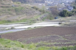 稲倉の棚田