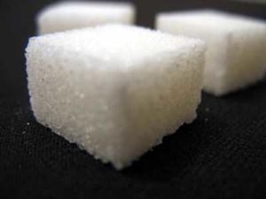 sukkerbit