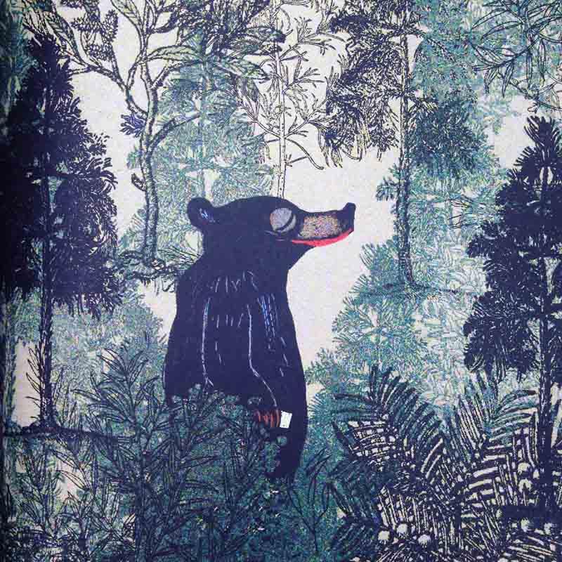 Ursul care nu era acolo și pădurea fabuloasă - urs zâmbăreț