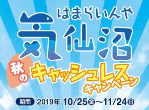 気仙沼秋のキャッシュレスキャンペーン開催中!!