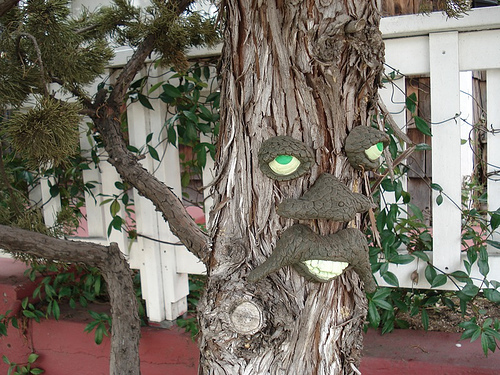 Tree Man Gallery