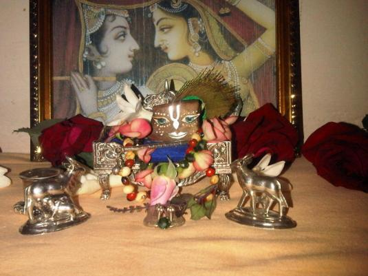 10 December - Mayapur (3)