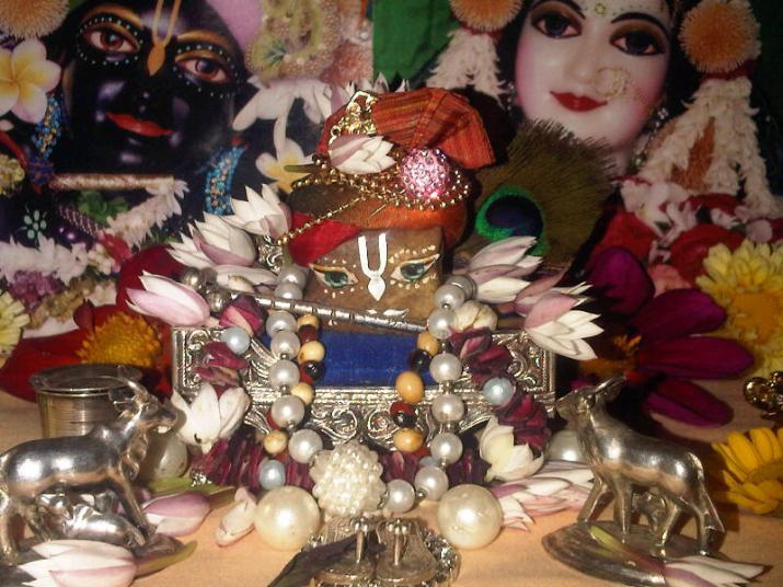 10 February - Mayapur (2)