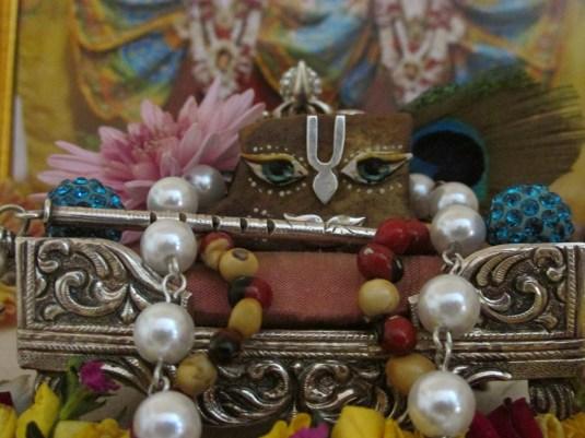 11 January - Mayapur (2)