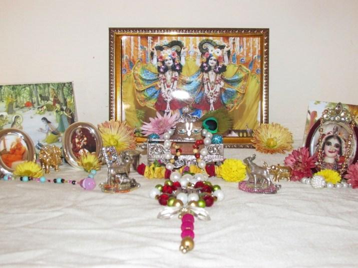 11 January - Mayapur (3)