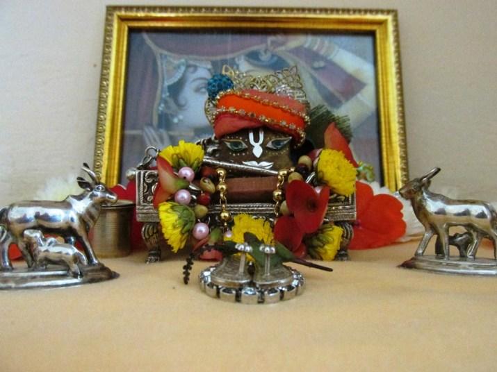 25 December - Mayapur (2)