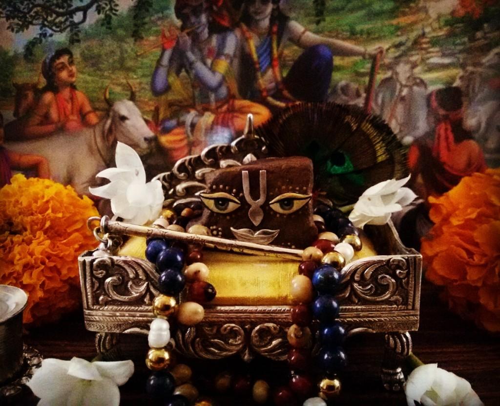 29 October - Vrindavan