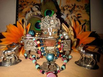 3 February - Mayapur (3)