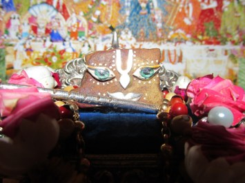 8 February - Mayapur (1)