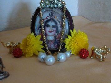 9 February - Mayapur (1)