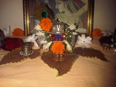 9 January - Mayapur (1)