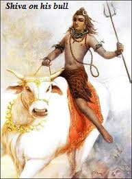 Lord shiva on bull