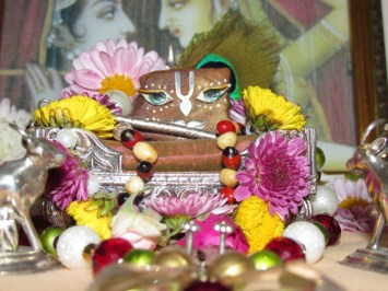 28 December - Mayapur (3)