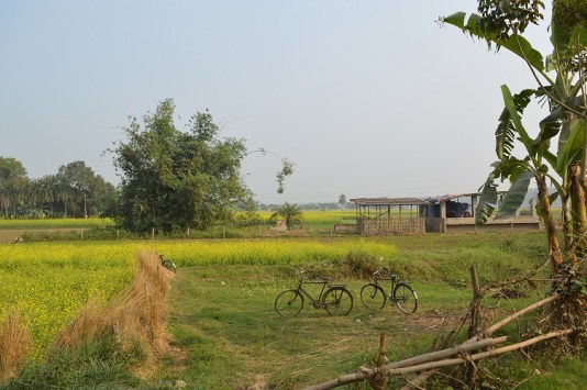 mayapur_dec_2015 (9)