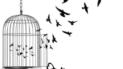 bird_in_a_cage