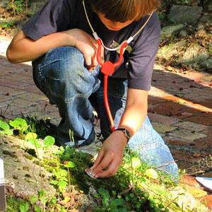 klangkunst im schul- und bürgergarten (1)