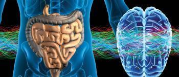 Darmen en hersenen