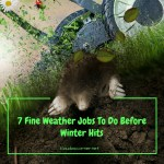 Outdoor Home Decor & Maintenance Tips – Jobs To Do Before Winter Hits