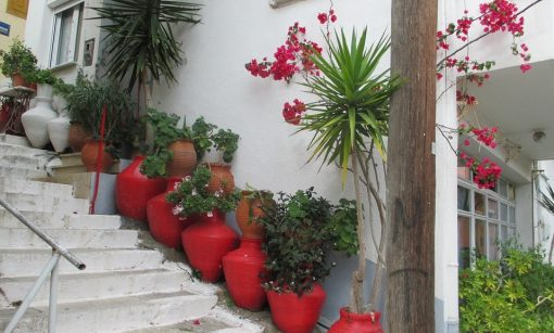 Exterior Home Design Ideas - Outdoor plant pots add charm to your home