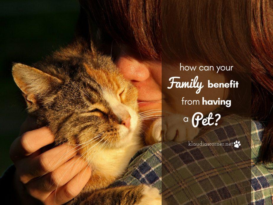 Why you should get a pet - ©klaudiascorner.net