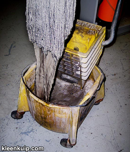 Double Bucket Mop System Carpet Cleaning How To