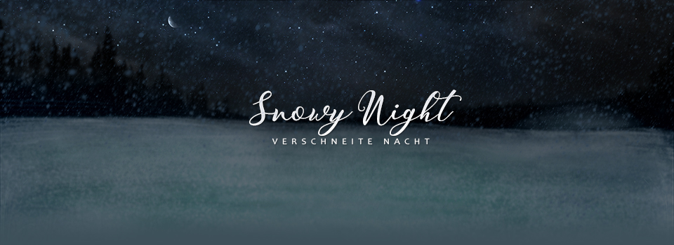 equinepassion_background_snowy_night