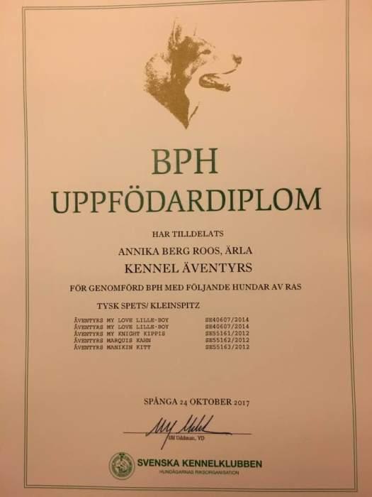 BPH diplom