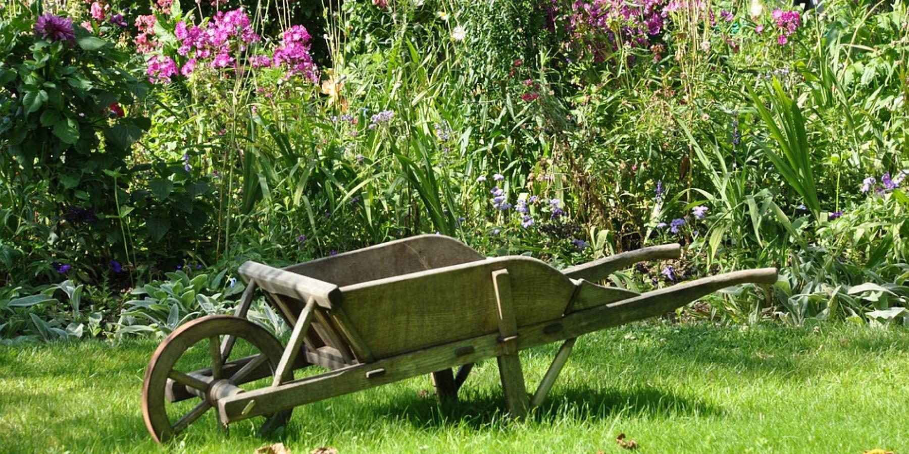 Gartenlust und Artenvielfalt