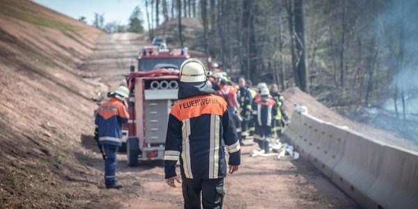 Brandgefahr in Grünanlagen und Wäldern deutlich gestiegen