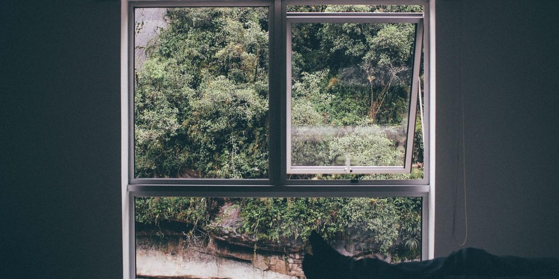 Neue Fenster lohnen dreifach