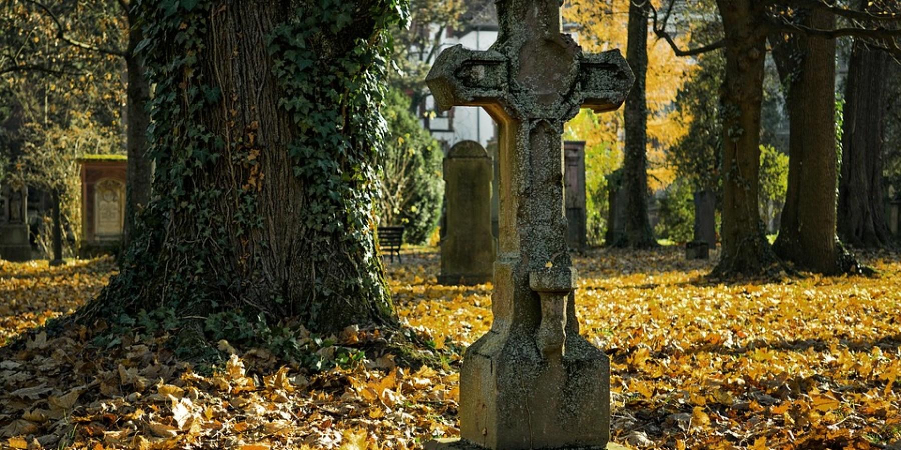 Informativer Spaziergang über den Waldfriedhof Lauheide