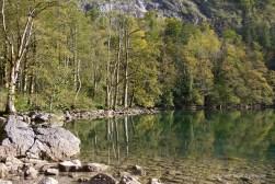 Herbstliche Bäume spiegeln sich im Obersee