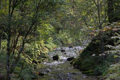 Bach vom Obersee zum Königssee