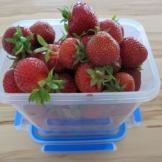 Lecker Erdbeeren im Click&Close