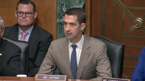 Cotton Speaks About Recovering the American Dream at Subcommittee Hearing