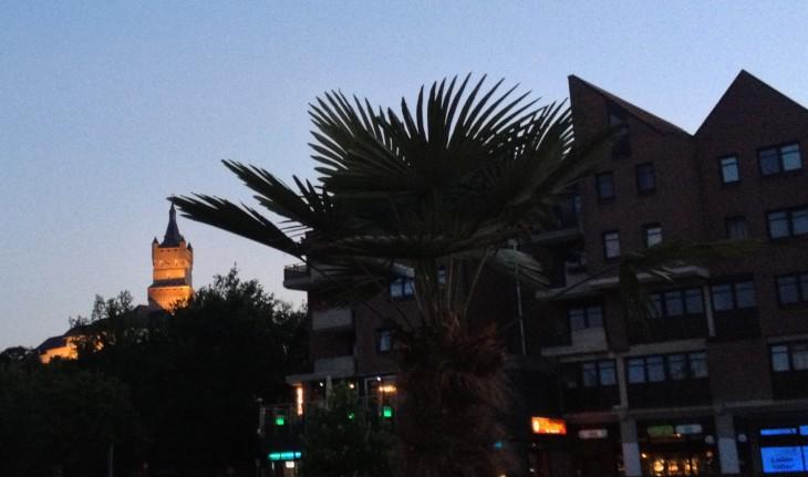 Schwanenburg unter Palmen