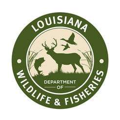 Louisiana Wildlife and Fisheries_1528321223548.jpg.jpg