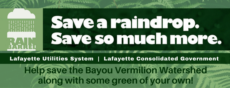 LCG rain barrel_1553615273355.png.jpg