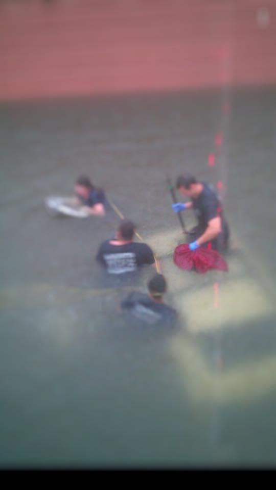 Flooding rescue LFD_1559934339693.jpg.jpg