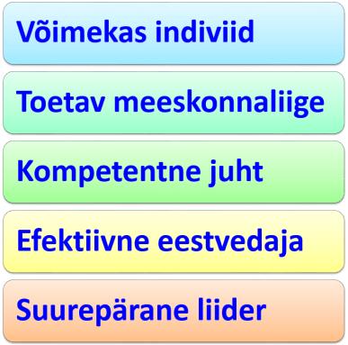 073 - juhtimise 5 taset