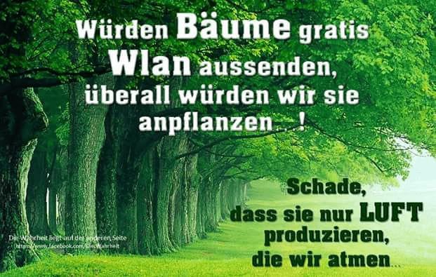 WLAN-Baeume ;)