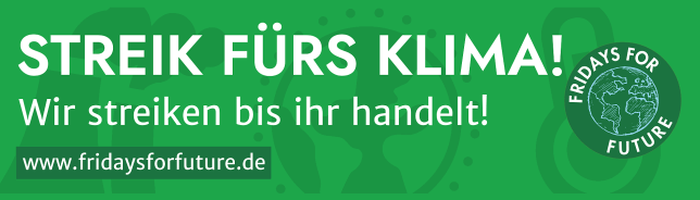 (C) fridaysforfuture.de