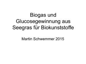 thumbnail of Biogas und Glucosegewinnung aus Seegras (1)