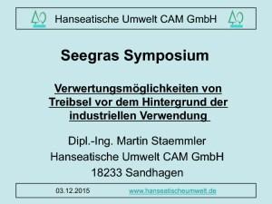 thumbnail of Vortrag Treibsel 151203