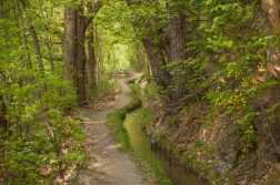 Hiking path along the water canal
