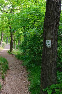 Lutherwanderweg