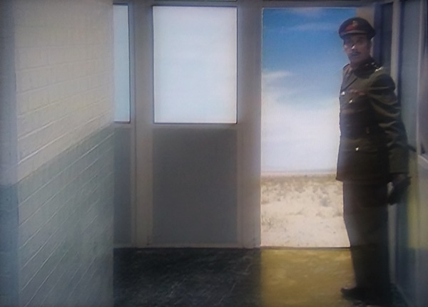 The Brigadier looks outside