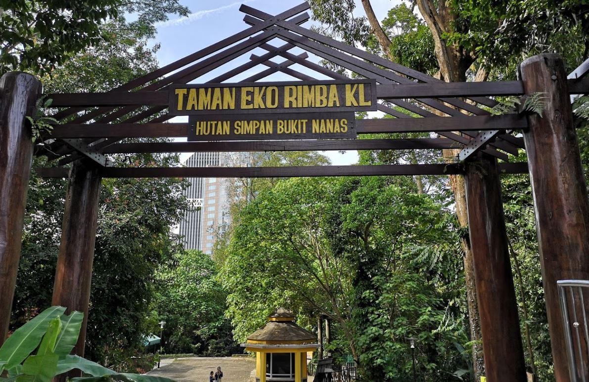 Bukit-Nanas-KL-Forest-Eco-Park