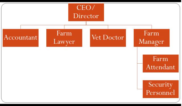pig farm business proposal organogram
